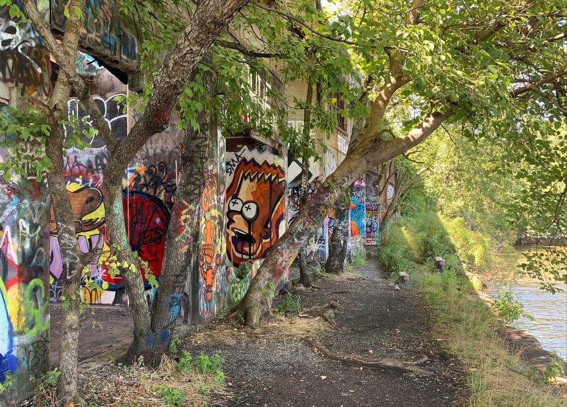 studio zewde graffiti pier image 9
