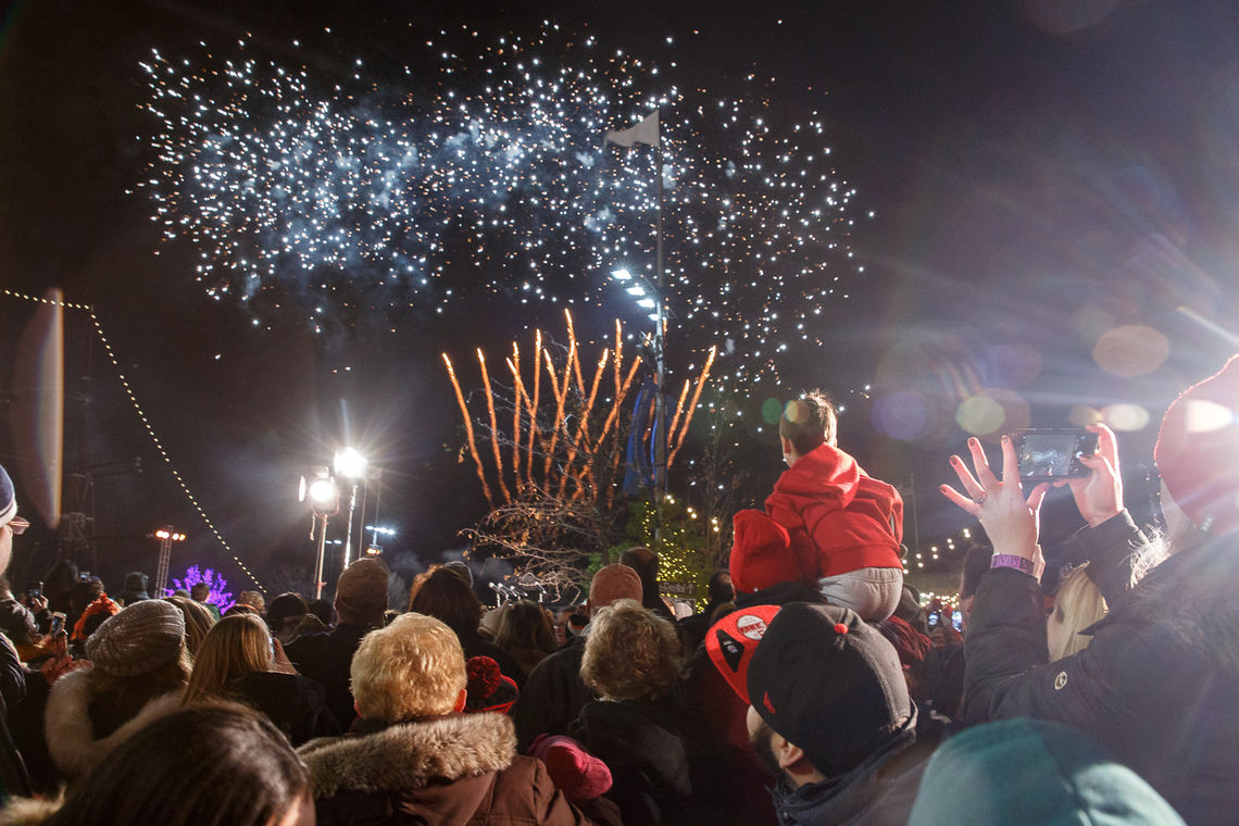 Guests Enjoy the Fireworks Finale